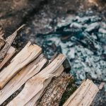 Can Firewood Be Too Old? (And What to Use!)